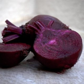 Rote Bete Bulls Blood Samen (Beta vulgaris)